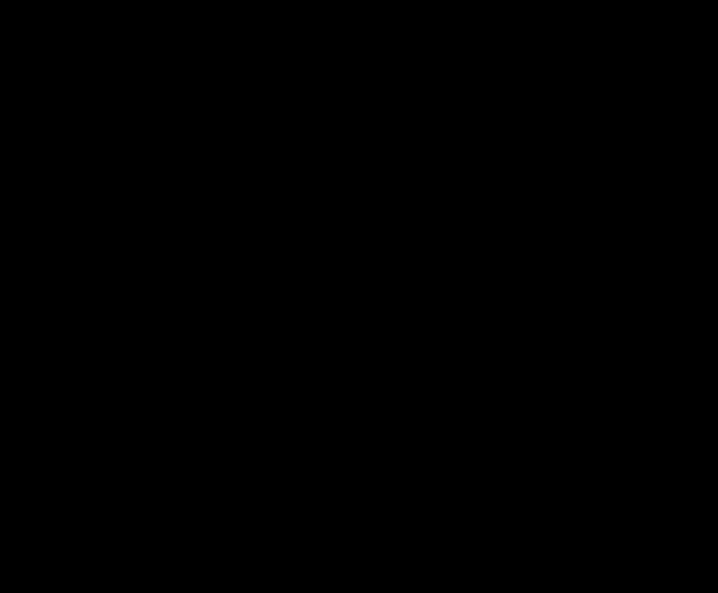 Medium and Small Leaf Silver Pendant